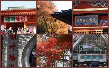 2010-11-281.jpg