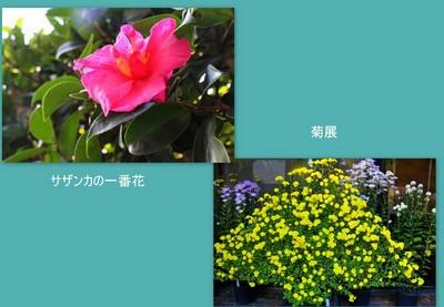 2014-11-073.JPG