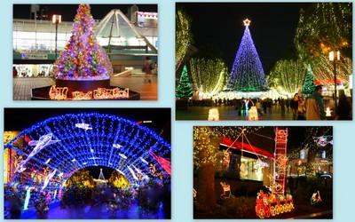 2009-12-151.jpg